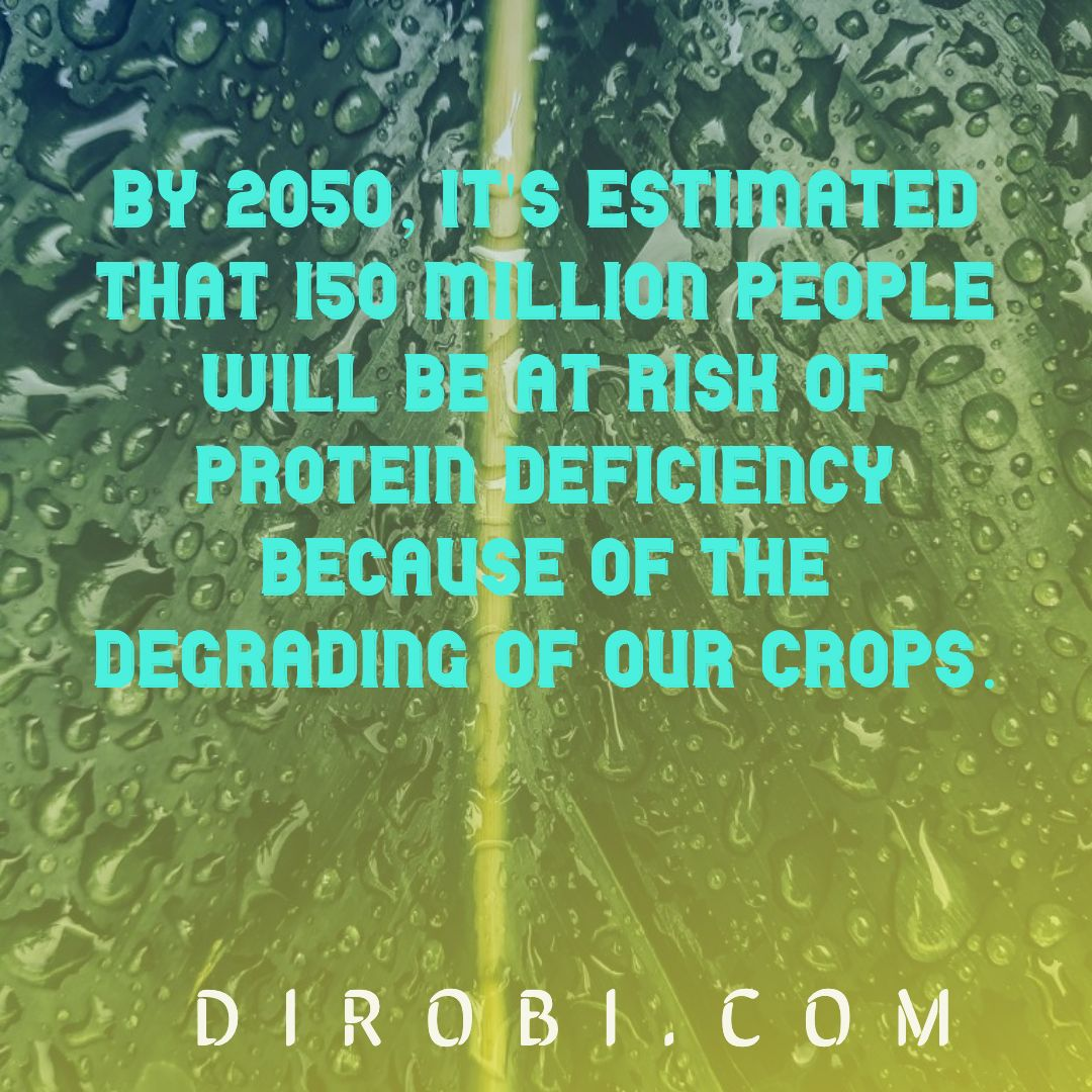 protein deficiency by 2050
