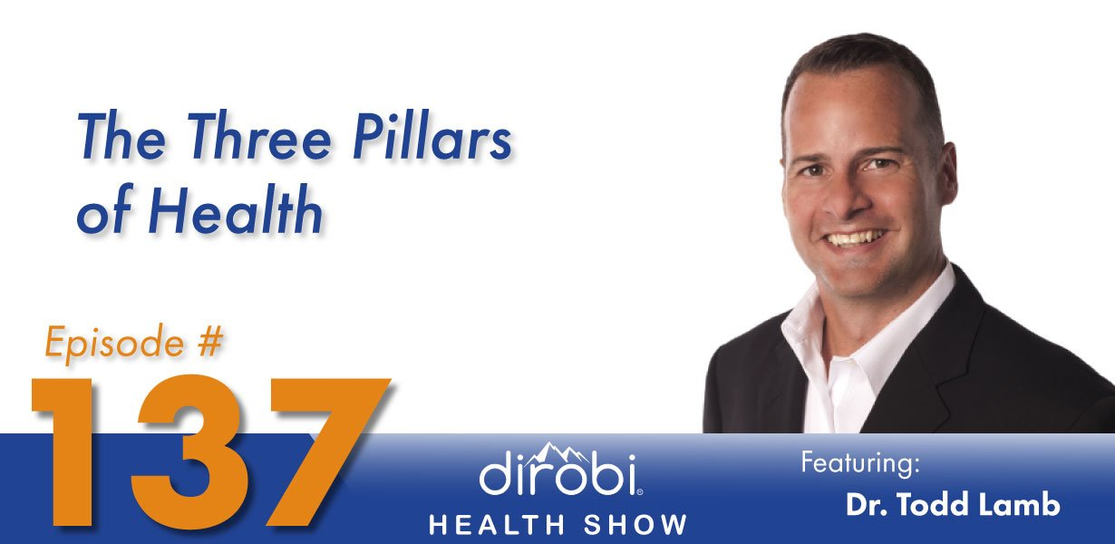 Dr Todd Lamb Three Pillars of Health Header
